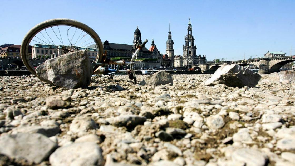 Niedrigwasser am Ufer der Elbe in Dresden (IMAGO / momentphoto/Robert Michael)
